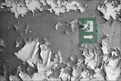 Exit (Bert Kaufmann) Tags: pripyat  pripjat prypyat abandoned urbex verlaten desolaat ukraine oekrane kyivoblast chernobyl chornobyl tsjernobyl disaster nucleardisaster kernramp chernobyldisaster nuclear exclusionzone chernobylnuclearpowerplant urbexing krasnoye   chernobylnuclearpowerplantzoneofalienation zoneofalienation 30yearslater exit