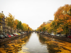 Autumn in Amsterdam (Martijn van Sabben) Tags: autumn fall herfst autumnlove amsterdam holland netherlands nederland whatevertheweather ngc trees tree foiliage canal canals water yellow color colour colours colors weather october love peace beauty street streets city cityview cityscape straat stad steden 500px cars auto autos lines