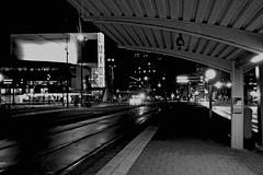Tramstop Wilhelminaplein (davidvankeulen) Tags: europe europa wilhelminaplein rotterdam metropoolrotterdamdenhaag gemeenterotterdam underground subway ubahn ondergrondse metro urbanrail unterbahn stadtbahn tram tramway strassenbahn strasenbahn tranvia lightrail metrolink semimetro randstadrail rijnmond haaglanden ret retrotterdam metroe metrolinee metrolijne davidvankeulen davidvankeulennl davidcvankeulen urbandc