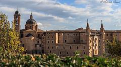 Panoramica Urbino (antonio.canoci) Tags: urbino marche italia borgo medievale torricini palazzo ducale canon 100d 1585usm