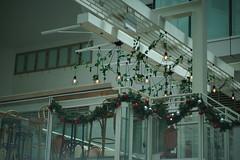 DSC04288 (oliveplum) Tags: christmas decoration capitolpiazza shoppingmall olympusomsystemzuikomcautot12f85mm sony singapore