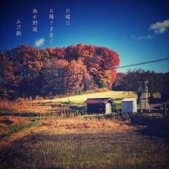 #photoikku #haiku #jhaiku #winter # #snapseed # #photohaiku #japan #poetry # (Atsushi Boulder) Tags: instagramapp square squareformat iphoneography uploaded:by=instagram photoikku photohaiku haiku verse poem poetry snapseed   winter    photo