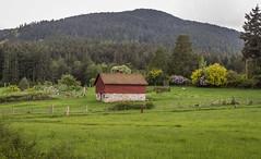 IMG_4548.jpg (funkgasm) Tags: barn orcasisland sanjuanislands eastsound washington unitedstates