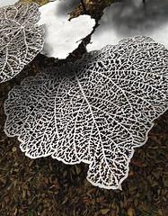 RhuBarBench (Rosmarie Voegtli) Tags: christophrihs art kunst vonrüttegut bielersee vernissage leaves blätter
