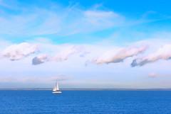Sailing (Simon Downham) Tags: cowes england unitedkingdom gb dsc5929 yacht sail sailing boat sea cloud clouds sky skyline