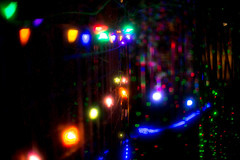 LED chirstmas lights (birzer) Tags: canon 50 10 christmas lights