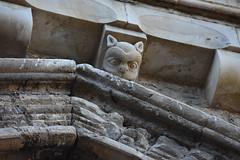 Claustre de la Seu Vella de Lleida (esta_ahi) Tags: lleida claustre claustro cloister seuvella ri510000156 catedral gtic gtico segri lrida spain espaa