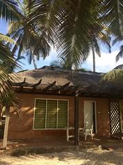 Anomabo Beach Houses (Rachel Strohm) Tags: ghana africa beachhouse hut thatchroof beach anomabo