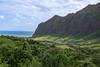 the lizard's tale (T N K) Tags: hollywood jurassic oahu valley hawaii green kualoa
