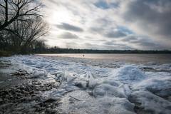 Frozen Lakeshore (RiverBum - MN) Tags: turtlelake shoreview minnesota winter lake ice frozen cold