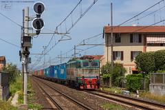 1025 - 655_048 + CONTAINER A TORRE DEL LAGO (LUCCA)  4-5-2013 FULL HD (SPECIALE CAIMANI XMPR) (Frank Andiver TRAIN IN TUSCANY) Tags: italy train canon frank photo italia photos rail trains tuscany rails locomotive toscana treno fs trenitalia treni 655 ferrovie binario caimano fullhd e655 andiver frankandiver trainintuscany