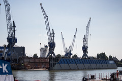 Cranes at Wiltonhaven Rotterdam (mishavb) Tags: world city blue sky urban holland netherlands architecture port harbor dock rotterdam sunny 010 wiltonhaven