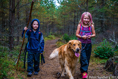 Two kids walks the dog or what to do when the dog walks with a small boy and girl (PeterSundberg65) Tags: blue sky dog white playing black green nature kids dark fishing woods eating tunnel stick flyfishing