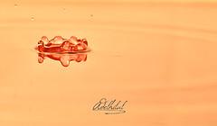 DSC_5837 (Adel Hilal عادل الهلال) Tags: السرعه تصوير قطرة قطرات فلاشات استديو فائق