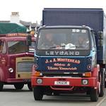 1981 Leyland Cruiser, J. & A. Whitehead Annan Scotland thumbnail