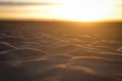Ocean Beach (Arthur Orola) Tags: sf sunset beach bay sand san francisco area bayarea