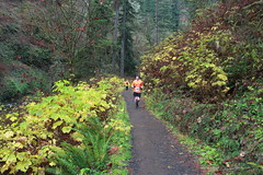 One of approximately 1,000 marathoners (rozoneill) Tags: park oregon creek silver state hiking south north falls salem sublimity wsweekly55