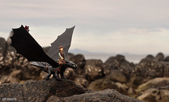 This is Berk (Toy Photography Addict) Tags: toys dragons actionfigures dreamworks toyphotography movietoys howtotrainyourdragon moviebasedtoys clarkent78 toyphotographyaddict dreamworkstoys