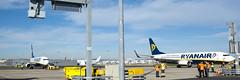 Chegada da Ryanair ao aeroporto de Lisboa (ANA Aeroportos de Portugal) Tags: travel lisboa lisbon ryanair viajar lisbonairport aeroportodelisboa anaaeroportos aeroportosdeportugal anaaeroportosdeportugal vision:outdoor=099 vision:clouds=0679 vision:sky=0972 vision:ocean=0534 ryanairchegaalisboa