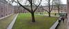 Amsterdam Hermitage courtyard, design Michael van Gessel (Ben ter Mull) Tags: amsterdam nederland courtyard hermitage noordholland binnentuin hermitageamsterdam michaelvangessel