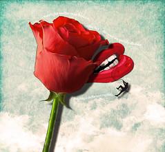 Naufrago (liz.hubersen) Tags: blue shadow red sea man black verde green art net water collage digital photoshop mouth marine poetry mare graphic blu web ombra rosa lips uomo poesia acqua rosso rugiada azzurro bocca grafica naufrago denti labbra
