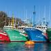 https://www.twin-loc.fr Bateaux dans le port de Fontarabie Pays Basque Espagne - Boats in Fontarabie harbor. Euskadi Spain - Picture Image Photography Photo water eau atlantique ocean atlantic