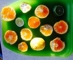 Fun with citrus (LUMIN8) Tags: orange green lemon mandarin citrus lime slices