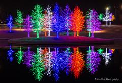 2013 - Vitruvian Park Christmas Lights - Addison, TX (kinchloe) Tags: holiday reflection reflections lights colorful texas christmaslights dfw addison vitruvianpark