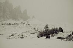 (Antonio Niro) Tags: road november italy white snow black season landscape nikon strada italia novembre view selva