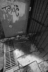 toxic (local paparazzi (isthmusportrait.com)) Tags: street winter light blackandwhite bw white black detail brick art texture broken toxic lines metal wall contrast writing dark painting found typography prime graffiti words pod alley gate paint downtown shadows floor bright mesh pavement iso400 text details cement shapes ground sharp textures alleyway elements disgusting font type gutter write madisonwi waste written angular locked statestreet splatter thewall tetris harsh madtown 2014 sharpened isthmus danecountywisconsin photoshopelements7 canon5dmarkii pse7 localpaparazzi redskyrocketman lopaps nikon18mm35ais velloadapter nikonftocanon