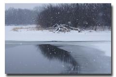 It's snowing ... (mariola aga) Tags: park trees winter lake snow reflection ice nature water landscape snowflakes freezing surface snowing thegalaxy mygearandme mygearandmepremium mygearandmebronze mygearandmesilver mygearandmegold mygearandmeplatinum mygearandmediamond vigilantphotographersunite vpu2 vpu3 vpu4 vpu5 vpu6 vpu7 vpu8 vpu9 vpu10