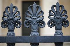 Grille, Feuilles d'acanthe, Panthéon, Paris (marc.fray) Tags: paris grille panthéon soufflot rondelet montagnesaintegeneviève feuilledacanthe