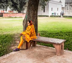 Woman at Red Fort gardens, New Delhi, India (antonioVi (Antonio Vidigal)) Tags: woman india garden delhi indian newdelhi redfort antoniovidigal