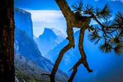 """El Capitan and Half Dome in Blue"" (Stitcher) Tags: blue landscape nationalpark el yosemite halfdome capitan"