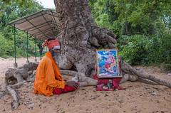 (skaa78) Tags: travel india architecture landscape ancient buried temples karnataka monuments hinduism ricoh ricohgr hoysala thalakkad