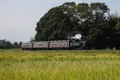 _MG_9503 (ryo5861) Tags: mokarailway c11 de10 pc50