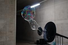 DSC08394 (Etoshas Pfanne) Tags: arselectronica2016 linz austria science future sterreich mediaart kunst