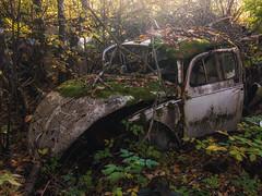 Forgotten (Pilleluringen) Tags: rural rurex trees decay sweden abandoned urbex vrmland outdoor old car beetle volkswagen nature