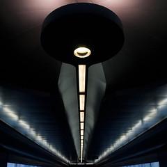 toledo (zecaruso) Tags: napoli toledo oscartusquetsblanca luci lights metropolitana metro nikond300 ze ze zequadro zeca zecaruso cicciocaruso explore