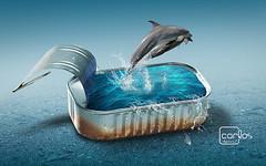 Atelier2 - Golfinhos (Carlos Atelier2) Tags: atelier2 carlos golfinhos mar azul gua natureza sardinha lata surreal