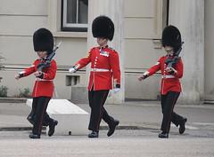 Img554935nx2 (veryamateurish) Tags: unitedkingdom british military army london wellingtonbarracks changingoftheguard publicduties ceremonial guardmounting newguard footguards householddivision grenadierguards
