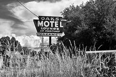 Oaks Motel and Lounge (Rob Sneed) Tags: usa louisiana opelousas oaksmotel lounge airconditioning vacancy motel sign neon vintage advertising bw arrow abandoned