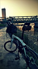 ORi_Bike_AR20003 (dorajistyle) Tags: ori bike ar20 minivelo folding