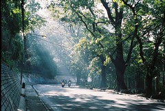 000022 (pawl_manchess) Tags: morning sunray analog film