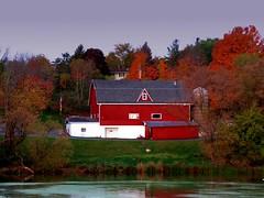 When in doubt... wear red!  Bill Blass (Laura Rowan) Tags: farm fall wisconsin richfield morning light color red autumn pond