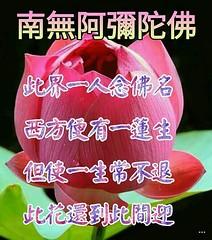 4460211906131_jpg (  ) Tags: amitofu namo amitabha