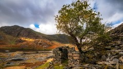 The Tree House xx (Einir Wyn) Tags: landscape outdoor quarry cwmorthin colour color tree foliage building house industry lake orange green northwales snowdonia snowdonianationalpark welshslatequarry rock walls uk britain light love nature natural