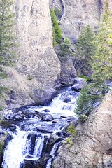 There are a lot of waterfalls in Yellowstone (kc_hoang) Tags: waterfall fastandfurious yellowstone worldtravel travelplanet worldwidelandscapes tamminhphotography kodakmoment