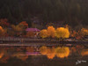 The Poetic Autumn (Max Loxton) Tags: pakistan autumn thefall northernareas skardu gilgitbaltistan travelpakistan beautifulpakistan towardspakistan yasirnisar yasirnisarphotography maxloxtonfilms