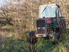 Taking a rest (neil.bulman) Tags: countryside castleton country peakdistrict nature highpeak tractor masseyferguson hopevalley derbyshire england unitedkingdom gb